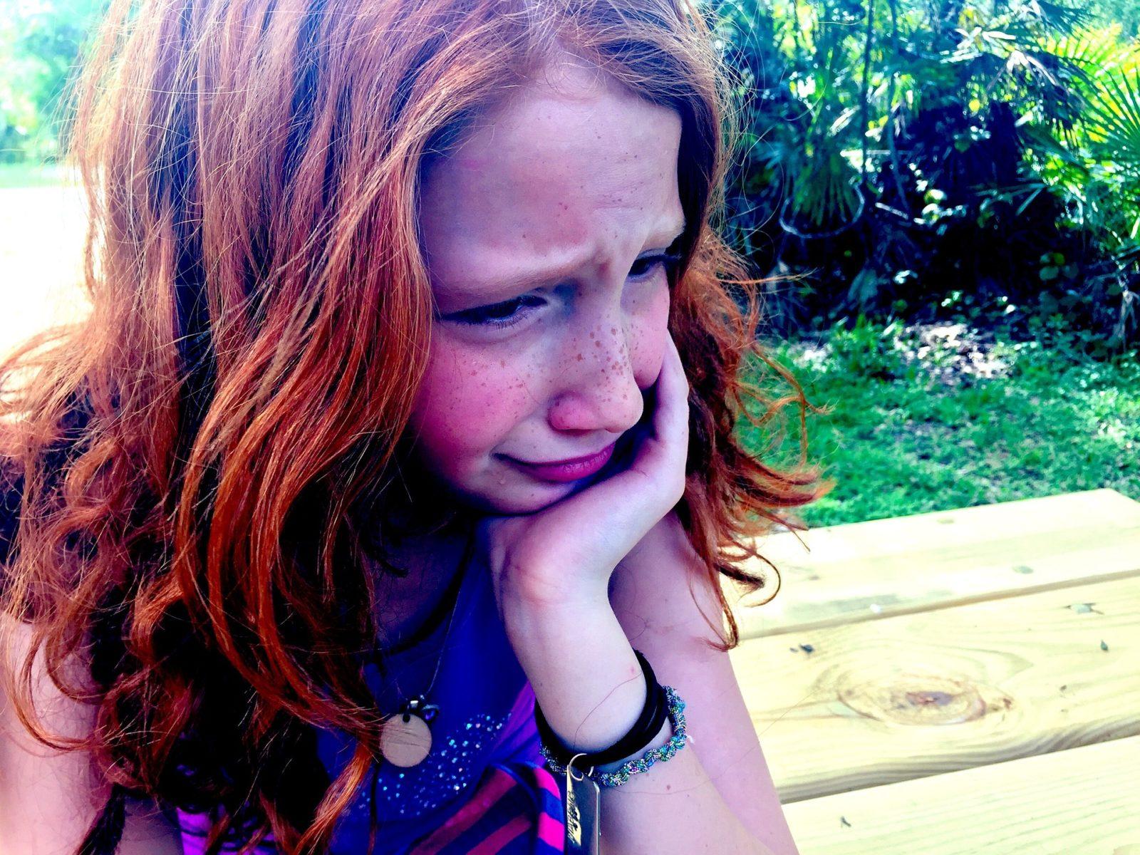 Understanding Meltdowns